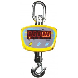 LHS Medium Duty Crane Scales